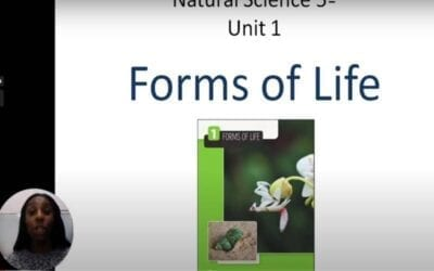 Repaso Natural Science 5º Unit 1: Forms of Life